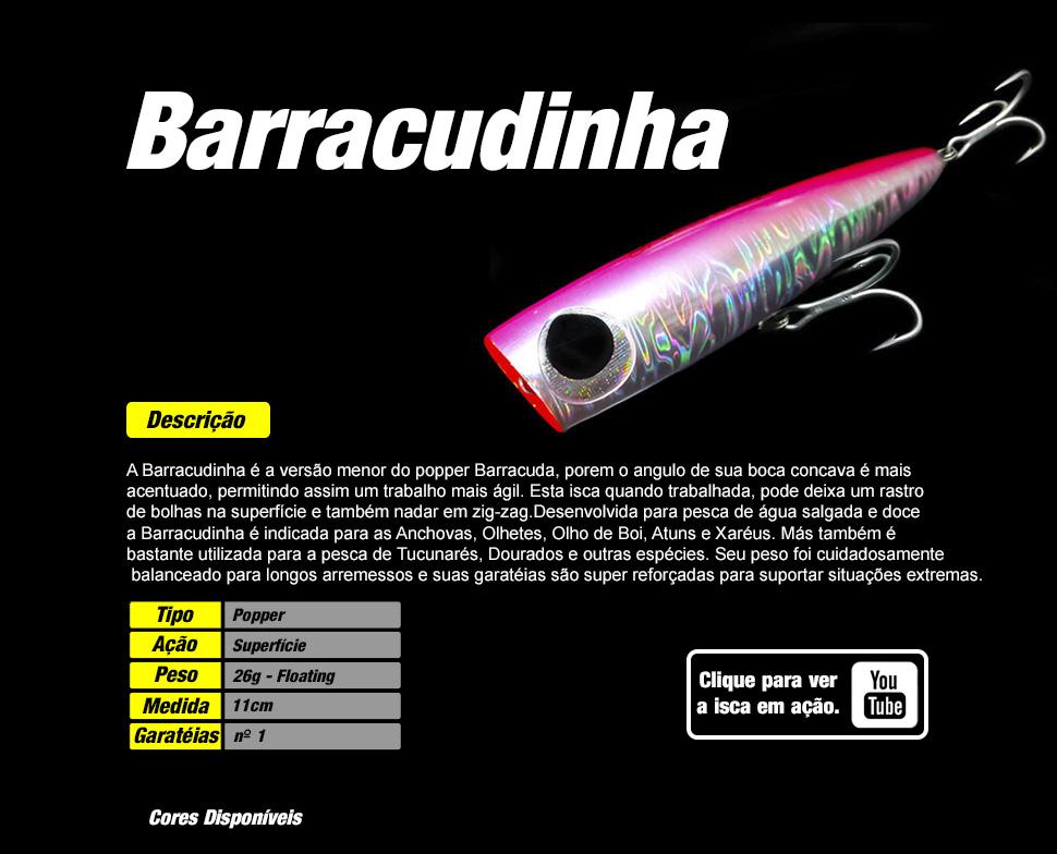 Descrição Barracudinha