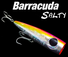 Barracuda Salty